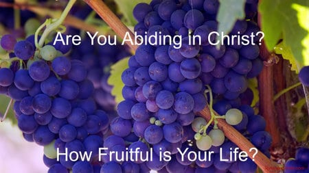How Fruitful Are You?