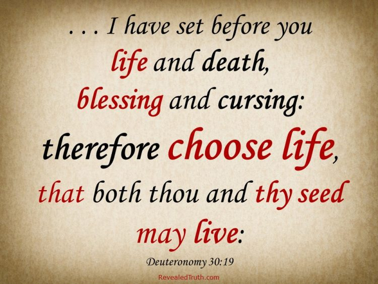 Choose Life - The Sanctity of Human Life - Deuteronomy 30:19