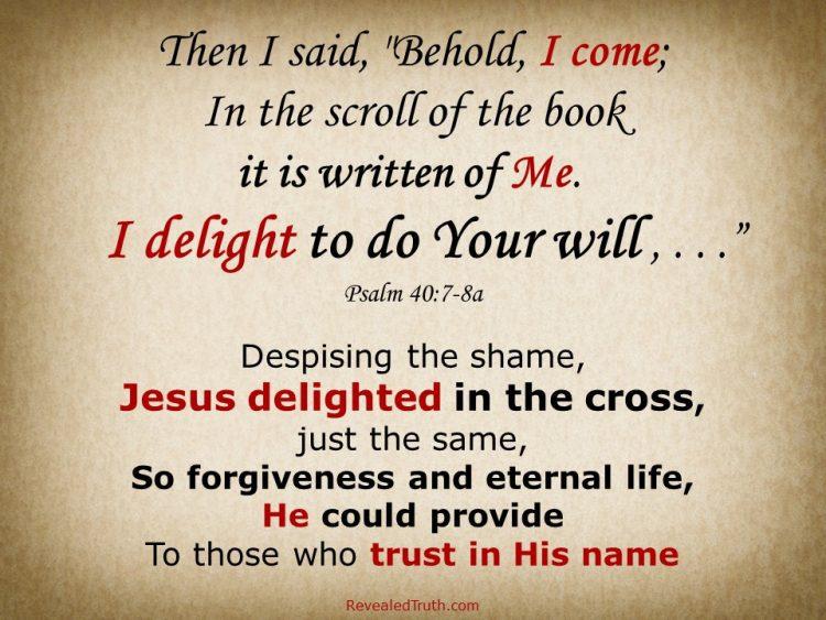 Delight in Doing God's Will