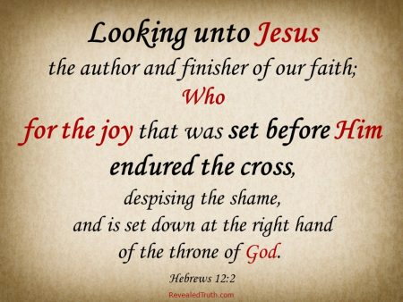 Hebrews 12:2 - Jesus endured the cross for the Joy set before Him