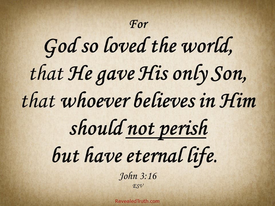 God so loved the world, that he gave his only Son, that whoever believes in him should not perish but have eternal life.