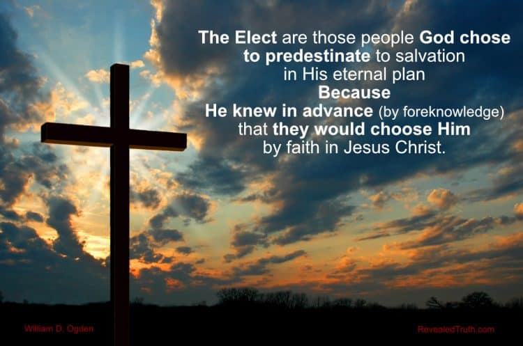 The Elect are Predestinated by God's Foreknowledge