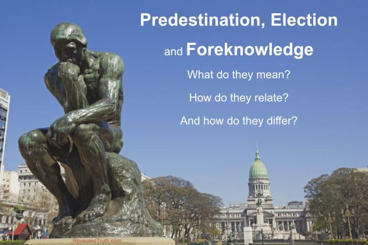 What are Predestination, Election and Foreknowledge?