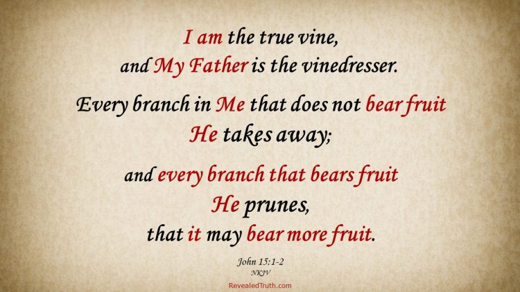 John 15:1-2 God prunes His children to make them more fruitful