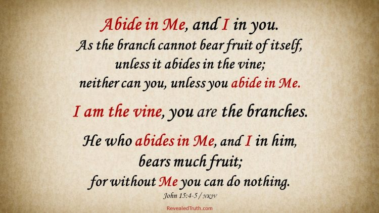 John 15:4-5 I am the vine, you are the branches. Abide in Me and bear much fruit.