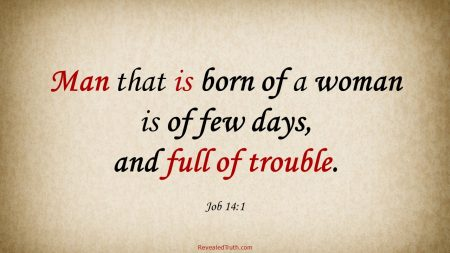 Job 14:1 KJV - Man is Few of Days and Full of Trouble