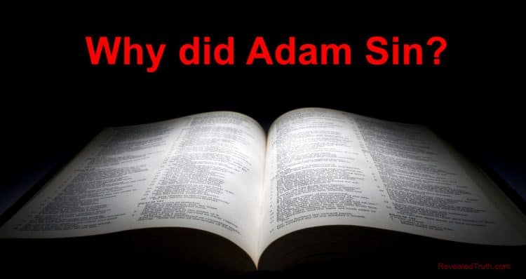 Why Did Adam Sin? - Genesis 3 Bible Study